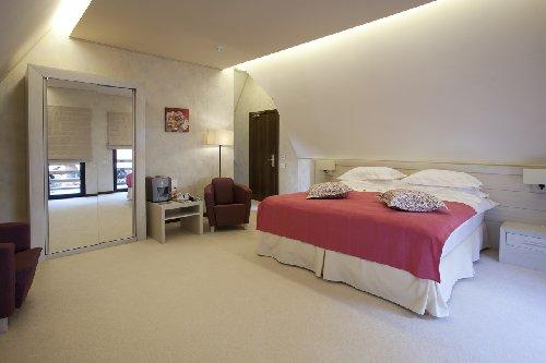 Hotel Ioana Hotels